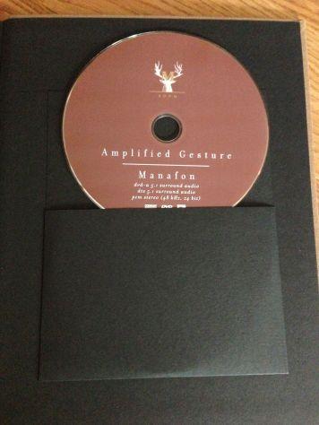 Amplified Gesture DVD