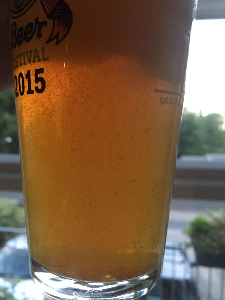 Soundwave IPA in the glass