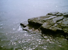 Rocks at Llantwit 2003
